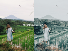 Load image into Gallery viewer, GREENWOODS LIGHTROOM PRESETS - PresetsbyFaye