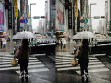 Load image into Gallery viewer, FILM TONE LIGHTROOM PRESETS - PresetsbyFaye