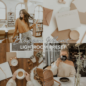 BLOGGER LIGHTROOM PRESETS - PresetsbyFaye