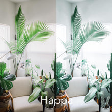 Load image into Gallery viewer, 2 Happa Presets | Lightroom Presets