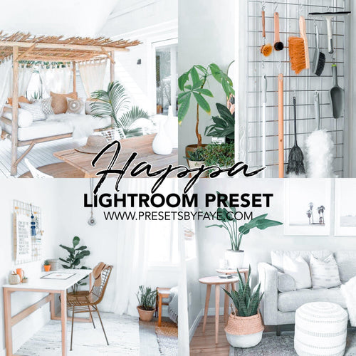 HAPPA LIGHTROOM PRESETS - PresetsbyFaye