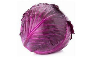 Cabbage - Red Head