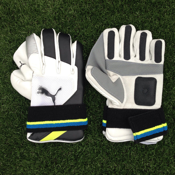 Puma Pulse Indoor WK Gloves
