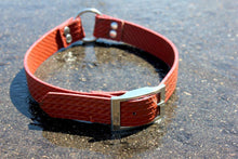 Load image into Gallery viewer, Ladder 34 Dog Collar