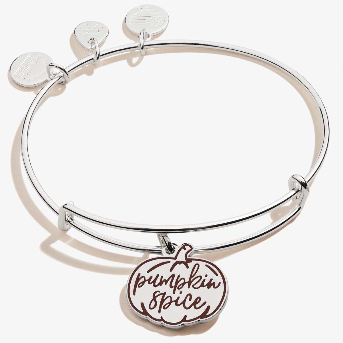 Pumpkin Spice Charm Bangle in Silver