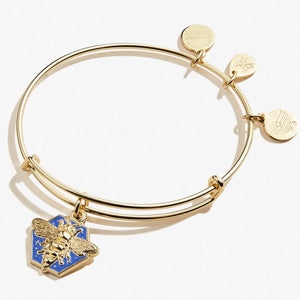 Honey Bee Color Infusion Charm Bangle