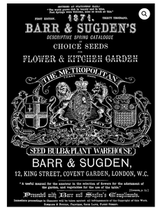 Barr Sugden Transfer Transfers - Iron Orchid Designs Transfers available at Lemon Tree Corners