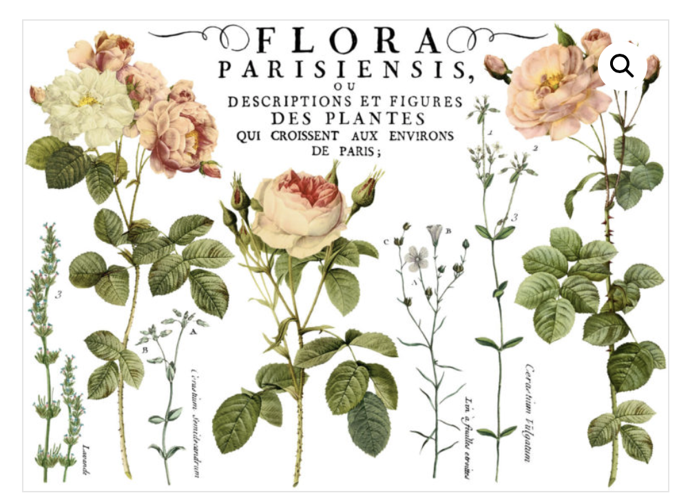 Flora Parisiensis Transfer Transfers - Iron Orchid Designs Transfers available at Lemon Tree Corners