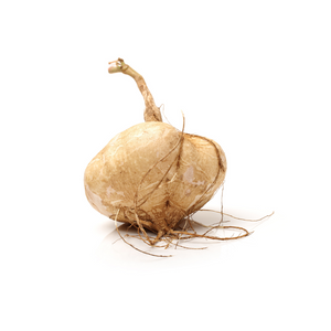 Yellow Turnip (1 lb)