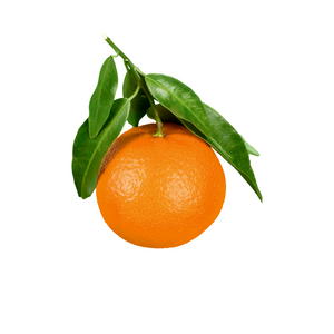 Oranges (1 unit)
