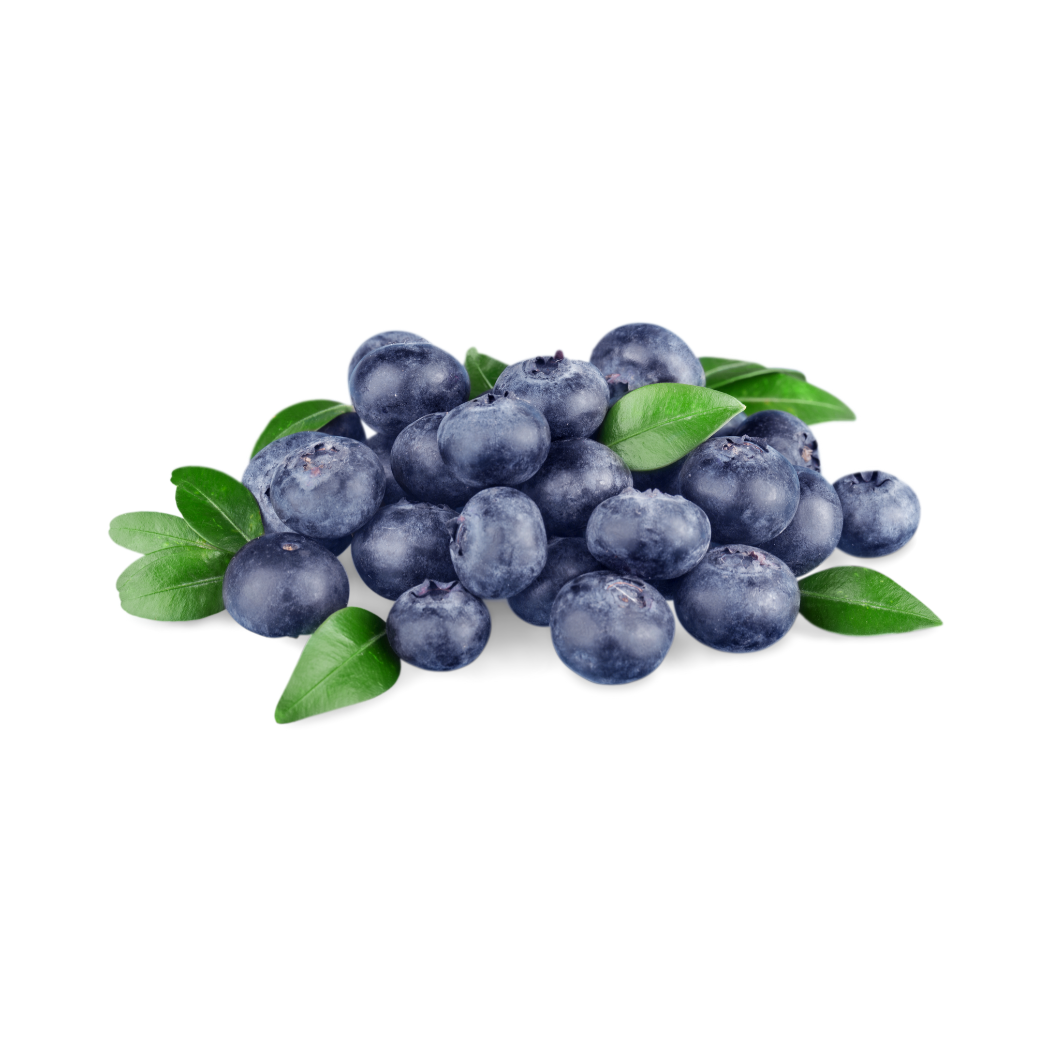 Frozen Cultivated Blueberries (30 lbs)