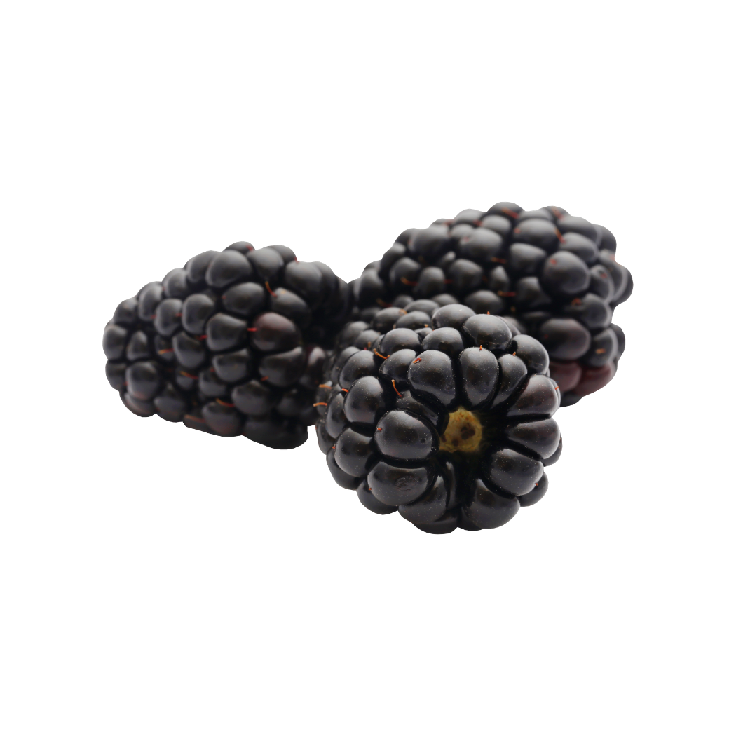 Frozen Blackberries (5 kg)