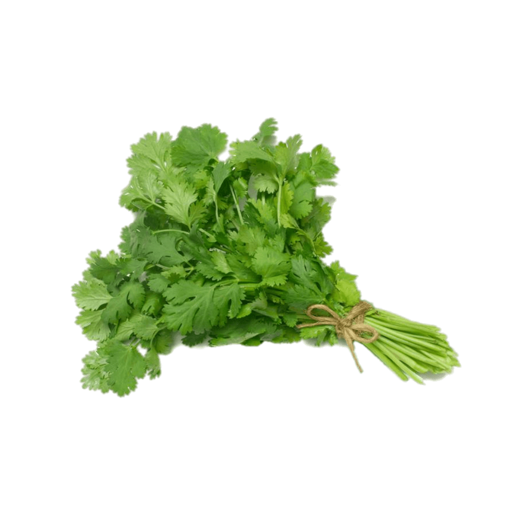 Italian Parsley (1 bunch)