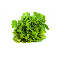 Load image into Gallery viewer, Frozen Rapini (5 x 1kg)