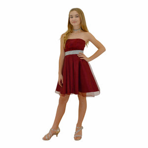 Paparazzi Couture Diamond design dress in Burgundy