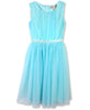 Designer Chiffon Dress in Mint