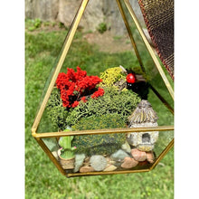 Load image into Gallery viewer, Asymmetrical Hanging Terrarium With Preserved Moss | Fairy Succulent Cactus and Fairy House | Red Accent Tree and Lady Bug