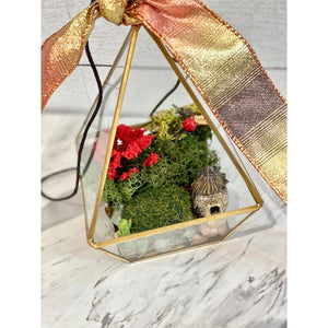 Asymmetrical Hanging Terrarium With Preserved Moss | Fairy Succulent Cactus and Fairy House | Red Accent Tree and Lady Bug