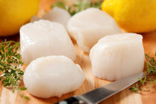Load image into Gallery viewer, 908g Large Canada Sea Scallop (Frozen)