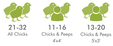 recommended chickens