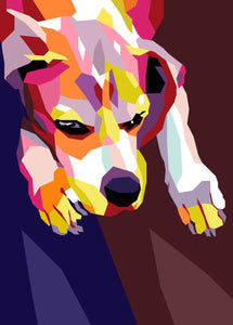 Colourful Pet Portrait