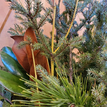 "Load image into Gallery viewer, 12"" Spruce Tip Planter"