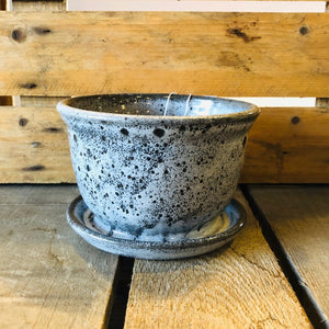 Lime Knot Leopard Speckled  Pot