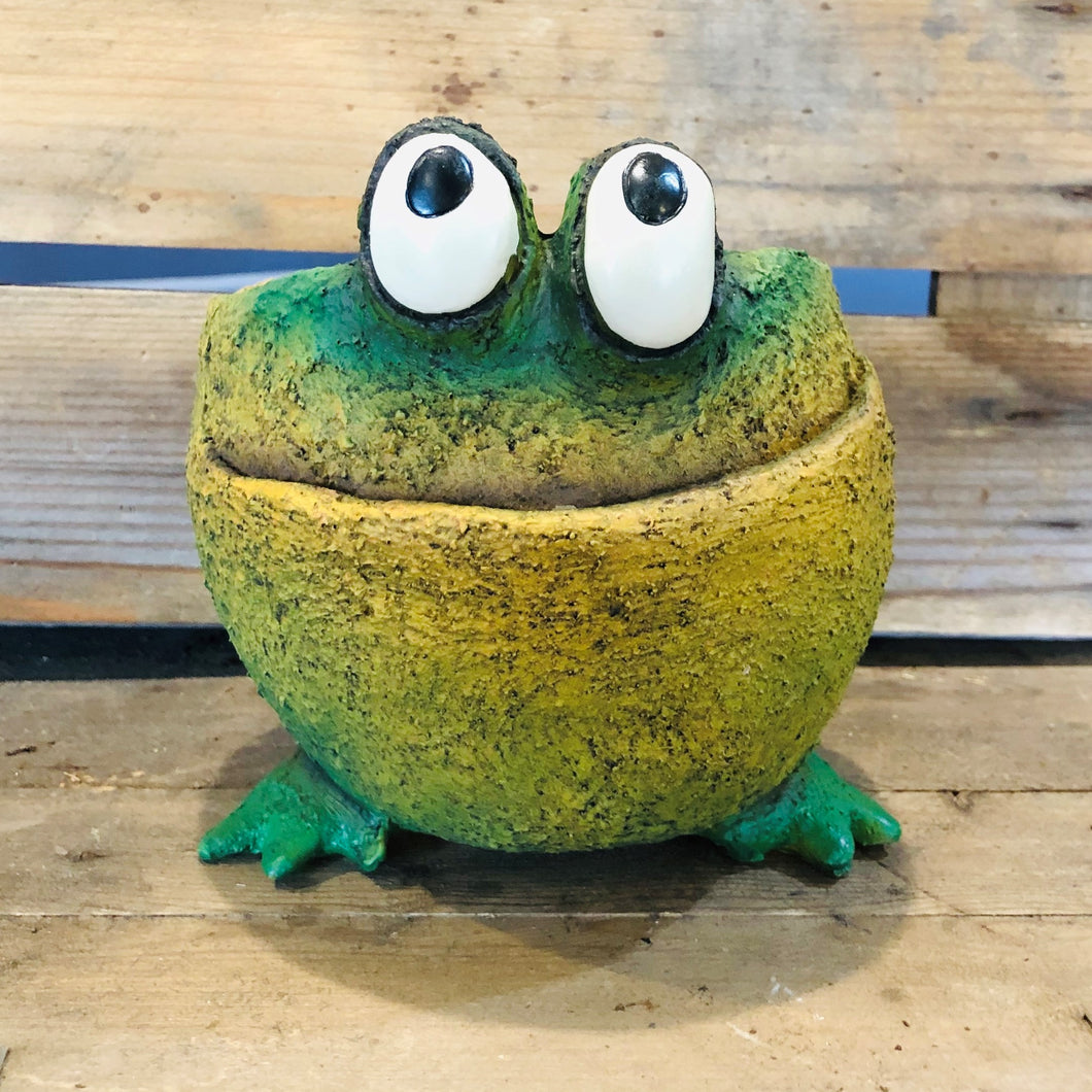Fred the Frog Planter