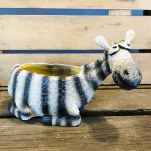 Ebenezer the Zebra Planter