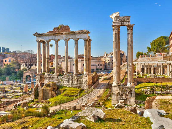 Ancient Rome: The Roman Forum and the Palatine Hill