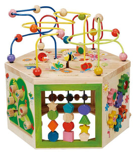 Ever Earth 7 in 1 Garden Activity Cube