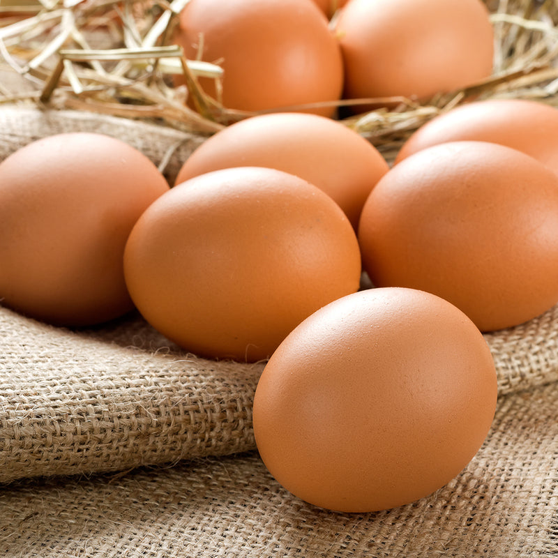 Cage-Free Brown Eggs, 15 dz