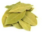 Bay Leaves, 2 oz