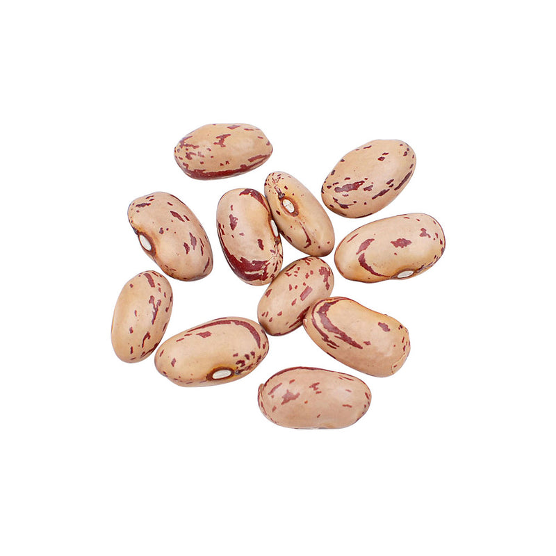 "Dried Cranberry ""Borlotti"" Beans, 10 lb"