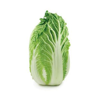 Napa Cabbage, 1 count
