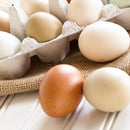 Pasture Raised Eggs, 1 dozen
