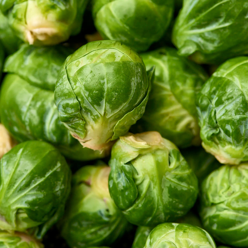 Brussels Sprouts, 5 lb bag