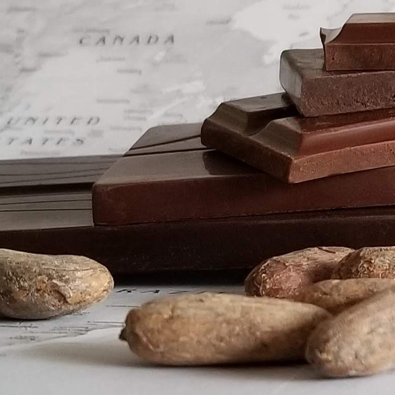photo of cocoa beans and some bean-to-bar chocolate pieces