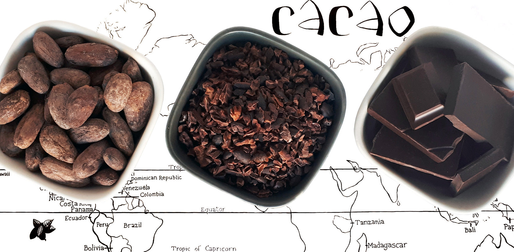 Image of cocoa beans, cocoa nibs and bean to bar chocolate