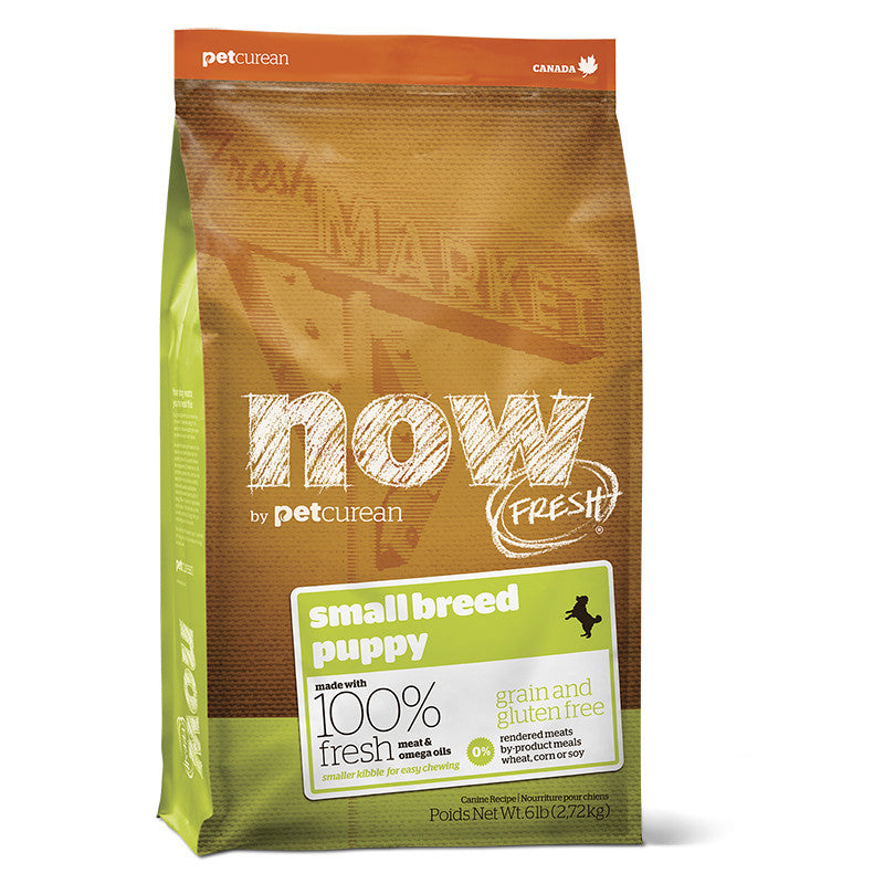 Now Grain Free Puppy Small Breed 2,7 kg