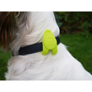 Rosewood led luminoso para collar grande