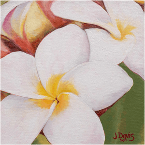 """Little Plumeria"" Giclee Art Print"