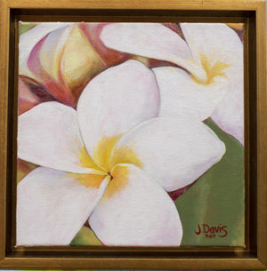 """Little Plumeria"" 8x8"" Original on Canvas by Julie Davis Veach shown framed in a gold float frame"