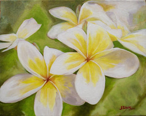 """Plumeria Morning"" 11x14"" Original on Canvas by Julie Davis Veach"