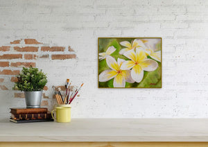 """Plumeria Morning"" 11x14"" Original on Canvas by Julie Davis Veach diaplayed on contemporay counter top"