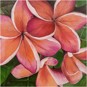 """Plumeria Love"" Giclee Art Print by Julie Davis Veach"