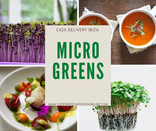 Micro Greens (new super foods)