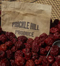 PH. Prickle Hill Jujubes - Bag