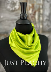 The Just Peachy Silky Solid Show Scarf ~ 23 Inch {Lime}