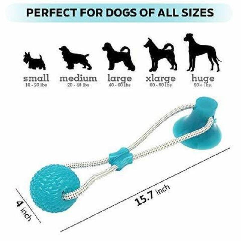 Magic Dog Ball® (BUY 2 GET 1 FREE) - Fitness Bison